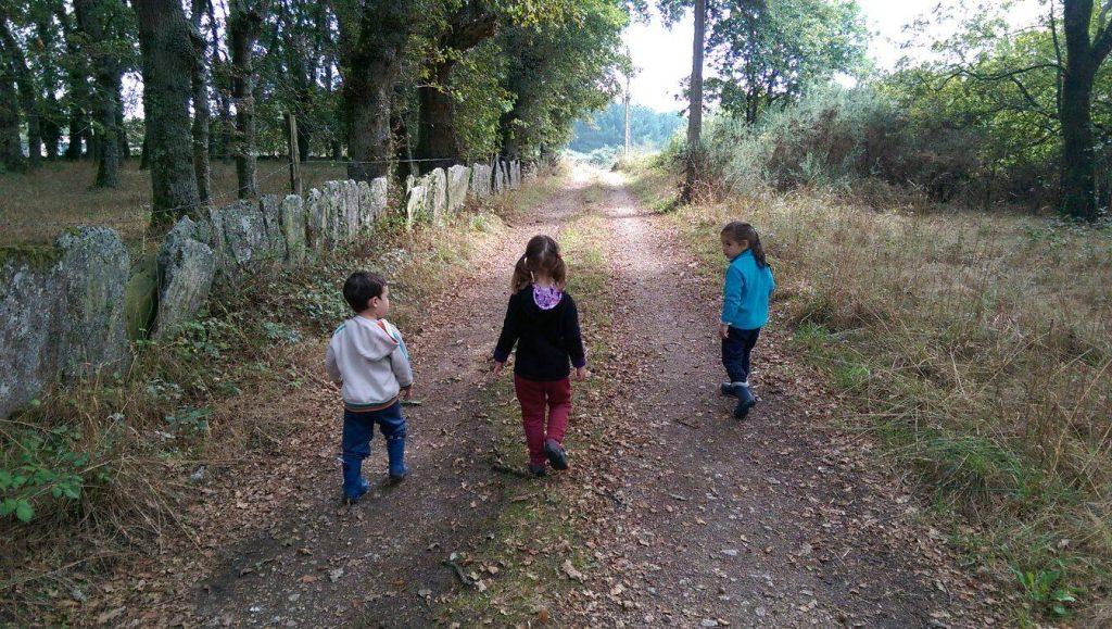 passeio-bosque
